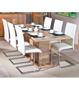 "Table rectangulaire ""ABSOLUTO 20"""
